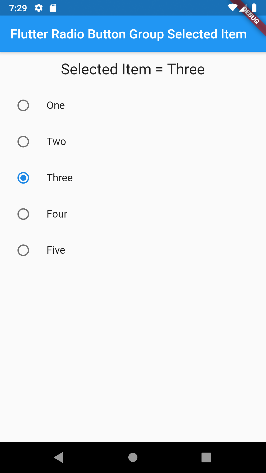 Show Get Selected Radio Button Group Value in Flutter RadioListTile