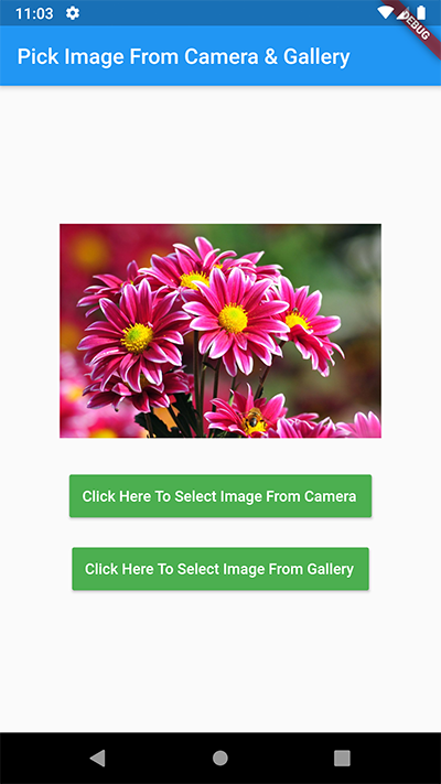 Flutter Select Pick Image From Camera Gallery Android iOS Tutorial